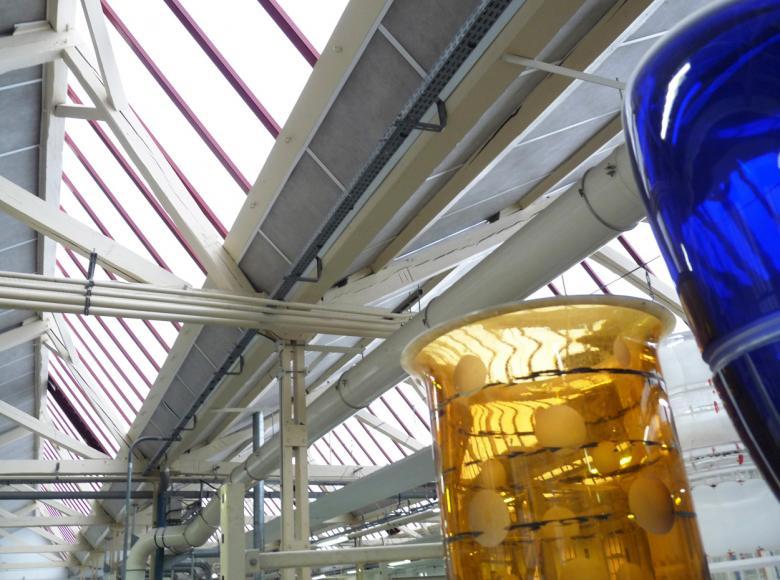 Cristalleries de Saint Louis lès Bitche rénovation verrière par structure polycarbonate référence Adexsi marque Bluetek