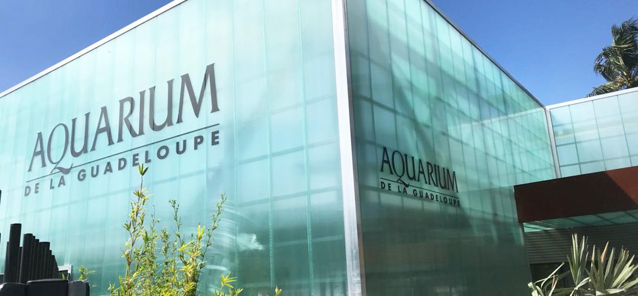 Référence Adexsi conduits de lumière naturelle Lightube sur aquarium du Gosier en Guadeloupe Dom-Tom